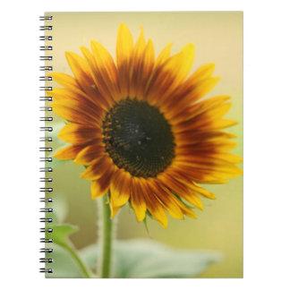 Girasol del jardín cuaderno