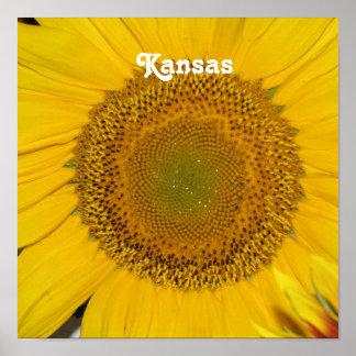 Girasol en Kansas Posters