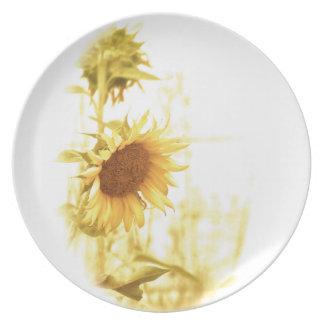 Girasol en las placas ligeras de la comida plato de cena