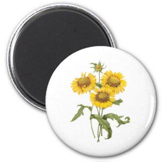 Girasol floral de la flor combinada del vintage imán redondo 5 cm