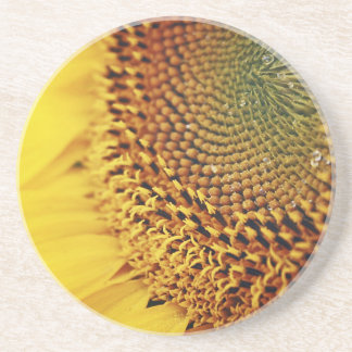 Girasol fresco y de oro posavasos personalizados