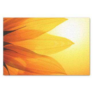 Girasol hermoso - papel seda papel de seda pequeño