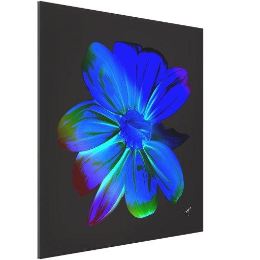 Girasol Hued azul en lona envuelta Impresiones En Lona