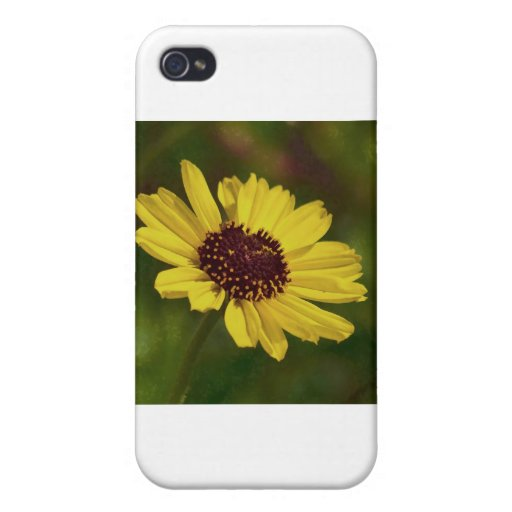 Girasol iPhone 4 Carcasa