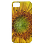 Girasol iPhone 5 Case-Mate Protectores