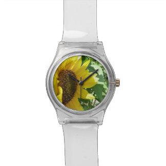 Girasol oblicuo relojes de pulsera