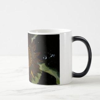 Girasol oscuro en la noche taza mágica