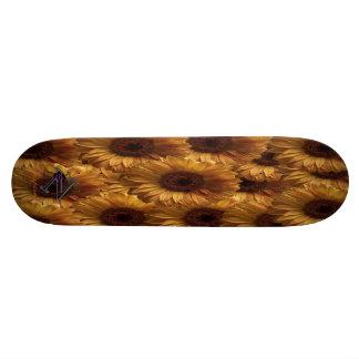 Girasol Tablas De Skate