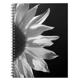 Girasol por el cuaderno de la luz de antorchas