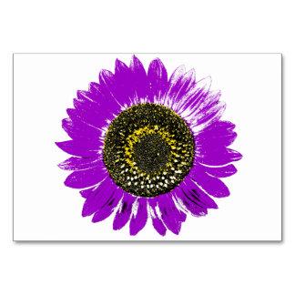 Girasol púrpura