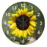 Girasol Reloj