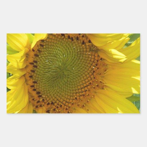 Girasol soleado rectangular pegatinas