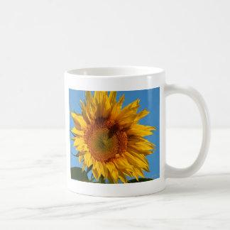 Girasol soleado taza básica blanca