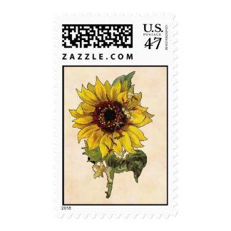 Girasol Timbre Postal