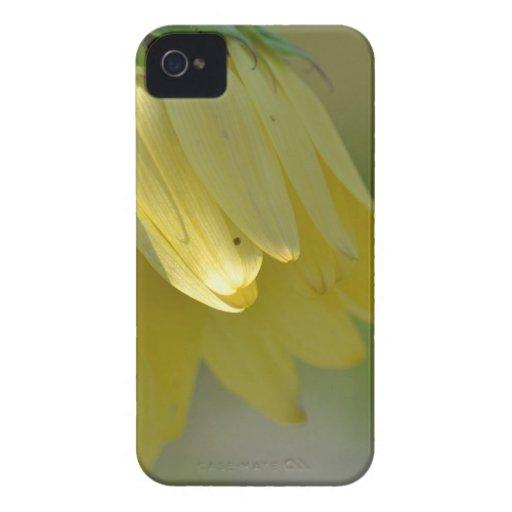 Girasol único Case-Mate iPhone 4 protector