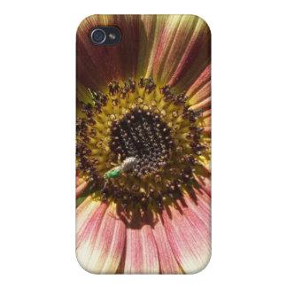 Girasol y la caja verde del iPhone 4 de la abeja iPhone 4 Cárcasas