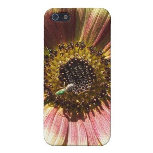 Girasol y la caja verde del iPhone 4 de la abeja iPhone 5 Carcasa