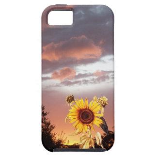 GIRASOL Y PUESTA DEL SOL DEL VERANO iPhone 5 CARCASAS