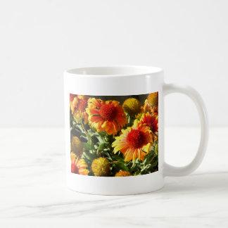 Girasoles anaranjados tazas de café