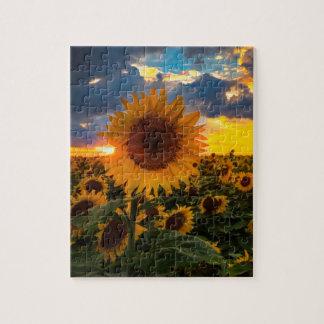 Girasoles coloridos en un campo puzzle