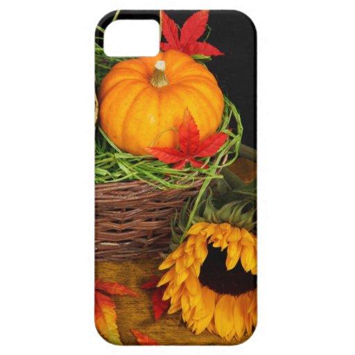 Girasoles de la cosecha de la caída iPhone 5 Case-Mate cobertura