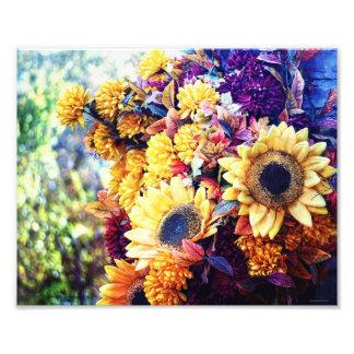 Girasoles del otoño fotografía