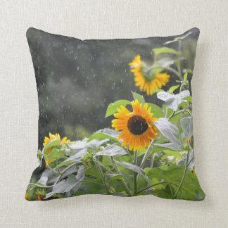 Girasoles en la almohada de la lluvia