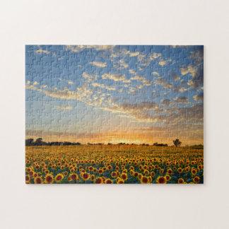 Girasoles en la puesta del sol rompecabeza con fotos