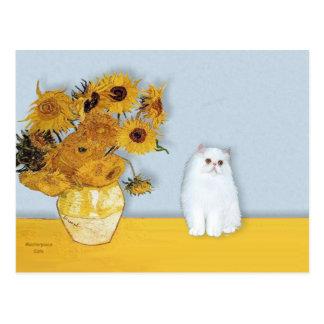 Girasoles - gatito persa blanco 49 postal