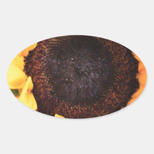 Girasoles Pegatina Ovalada