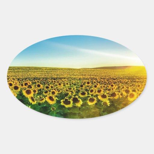 Girassol - Sunflower Three Pegatina Ovalada