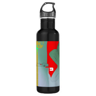 Girl and get away stainless steel water bottle