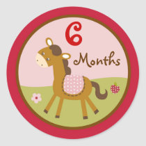 Girl Farm Animal Pony Monthly Milestone Stickers