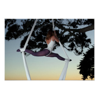Girl in Tree Suspended with Aerial Silks Poster