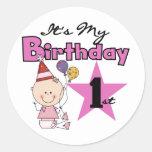 Girl It's My Birthday Tshirts and Gifts Round Sticker