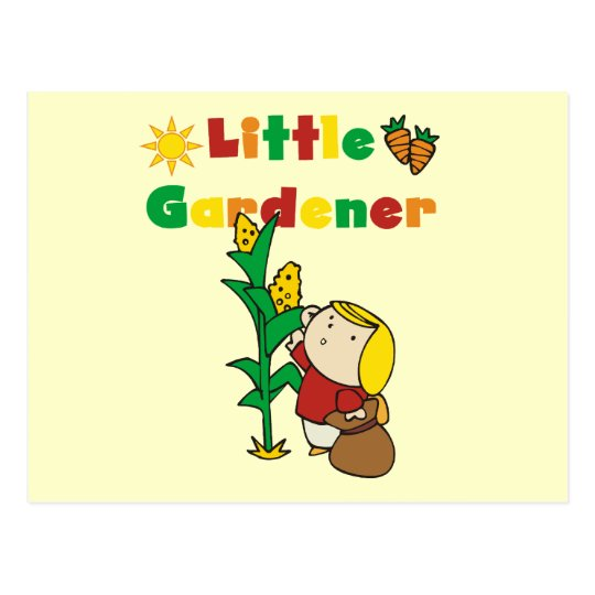 Girl Little Gardener Tshirts and Gifts Postcard