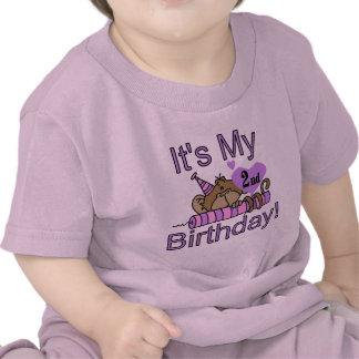 Girl Monkey 2nd Birthday Tshirts and Gifts