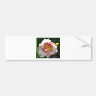 Girlish Laughter Lily Bumper Sticker