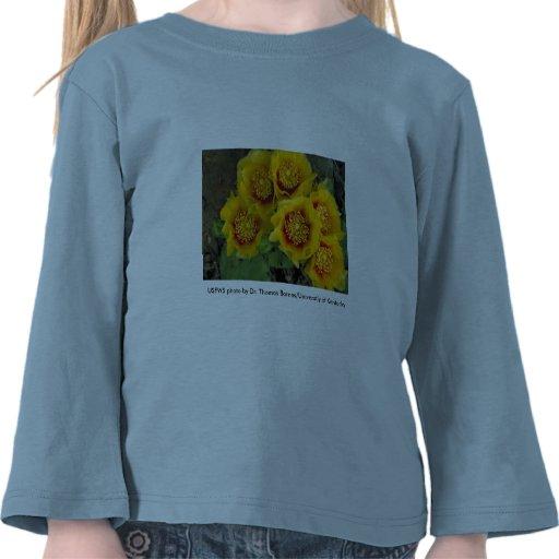 Girl's 3/4 T Tee Shirts