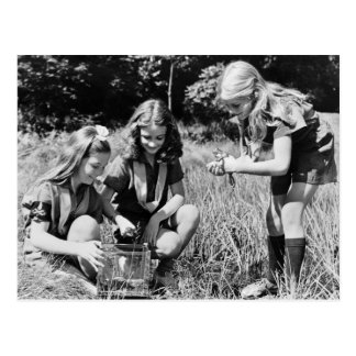 Girls Collecting Frogs, 1940s Postcard
