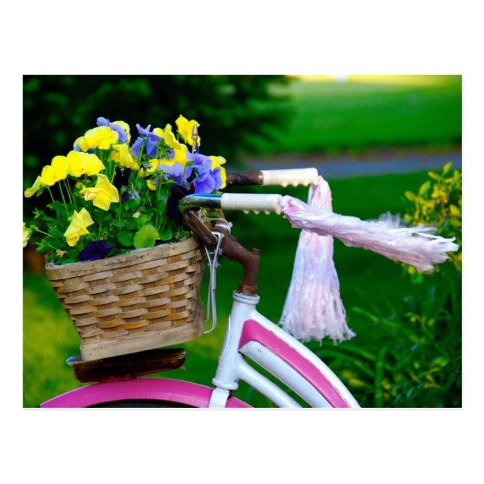 Girls Just Wanna Have Fun, Pink Girls Bicycle Postcard
