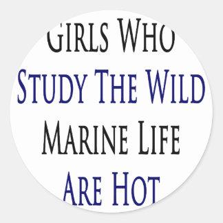 Girls Who Study The Wild Marine Life Are Hot Round Stickers