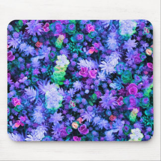 Girly Pink and Purple Floral Succulents Mouse Pad
