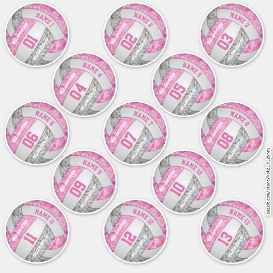 girly pink gray volleyball player names set of 13 sticker