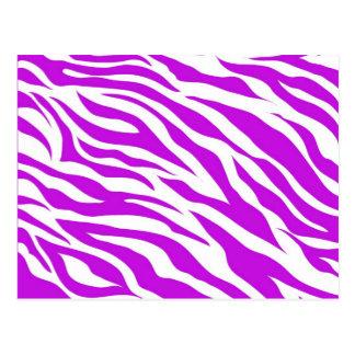 Girly Purple White Zebra Stripes Wild Animal Print Postcard