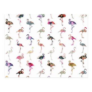 Girly Whimsical Retro Floral Flamingos Pattern Postcard