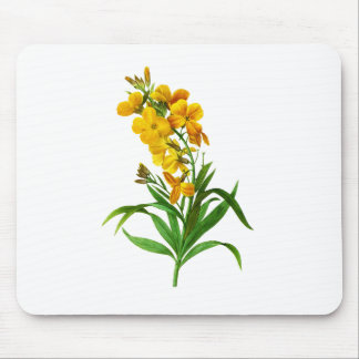 Giroflee Jaune by Pierre Joseph Redoute Mouse Pad