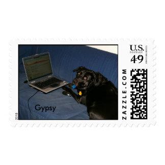 gitano que aprende el ordenador portátil, gitano timbres postales