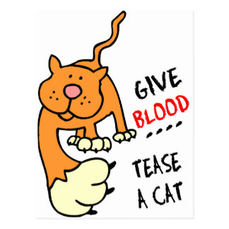 give blood tease a cat postcard