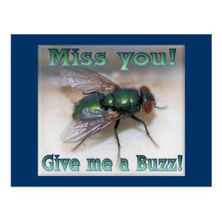 Give Me a Buzz!! Postcard